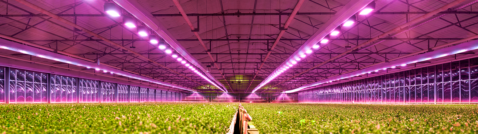How to choose the optimal LED fixture for your production