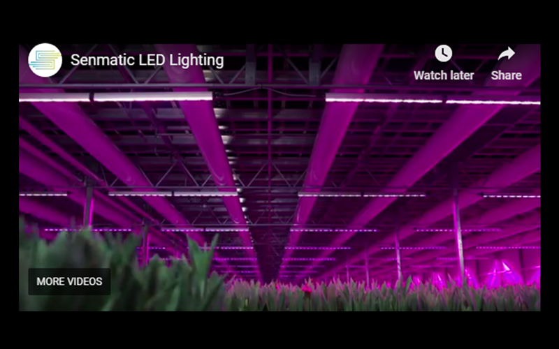 The controllable Senmatic LED fixture for special lighting